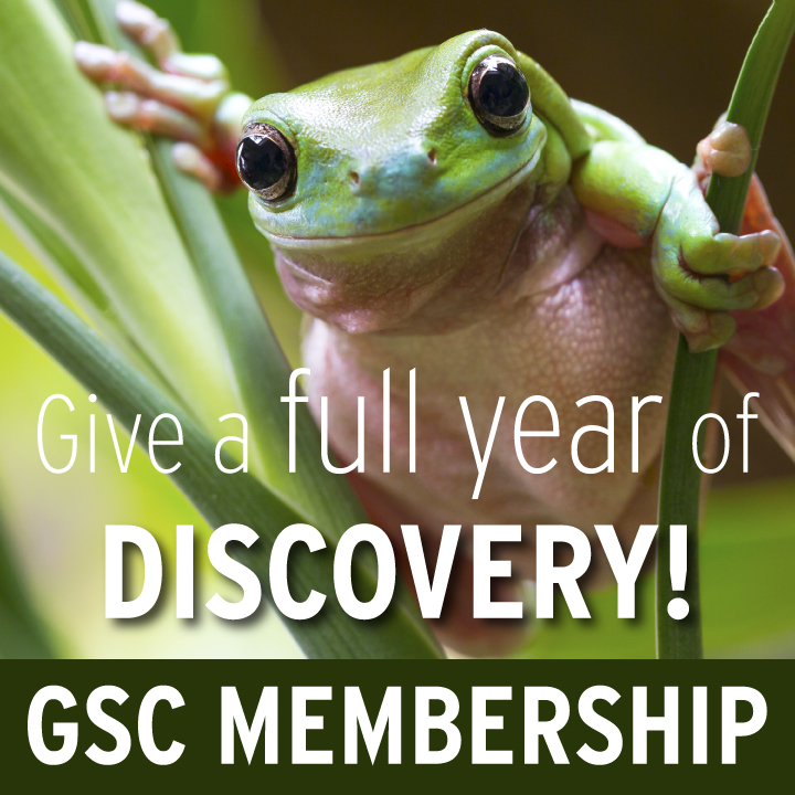 Give a GSC Membership